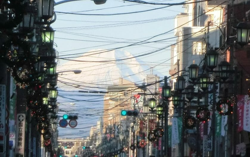 国立市の大通り- 富士見通り