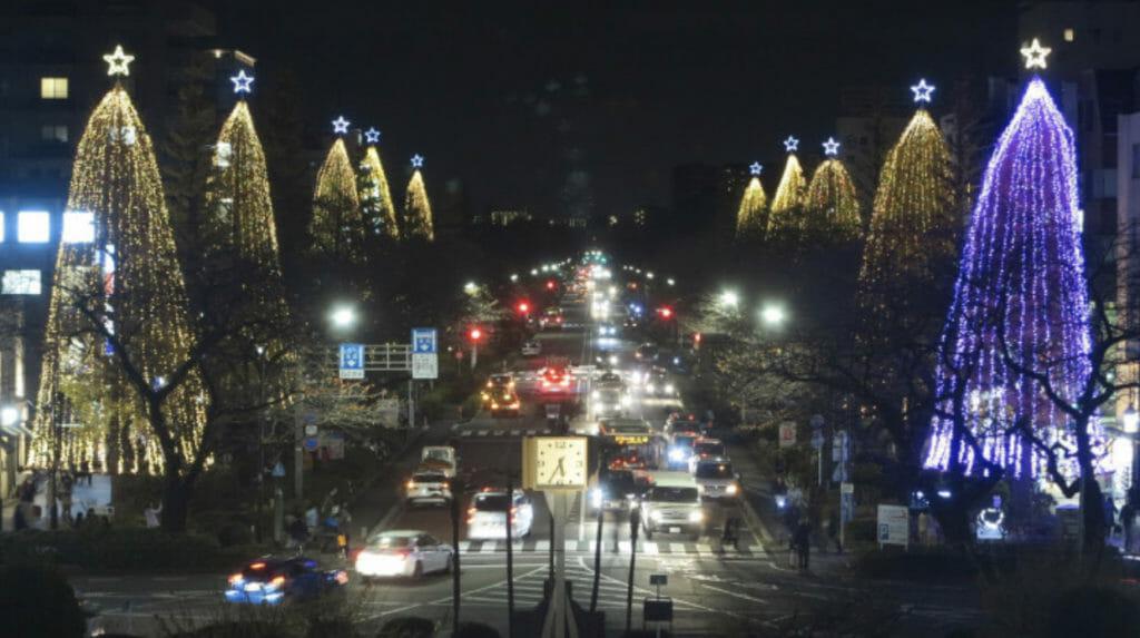 国立大学通りクリスマス